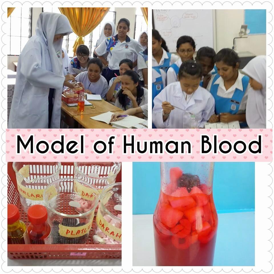 Idea Pdp : Membina Model Darah dan Komponen Darah