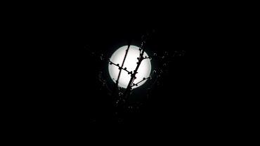 #12 Full Moon Wallpaper