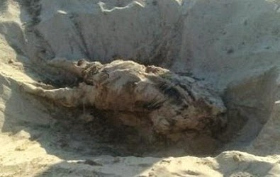 MASS Graves uncovered accidentally unveiling true dangers of iranian backed militias in iraq