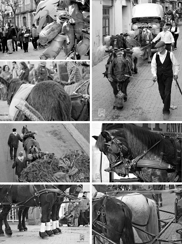 recull d'imatges dels 3 tombs d'Esparreguera 2014