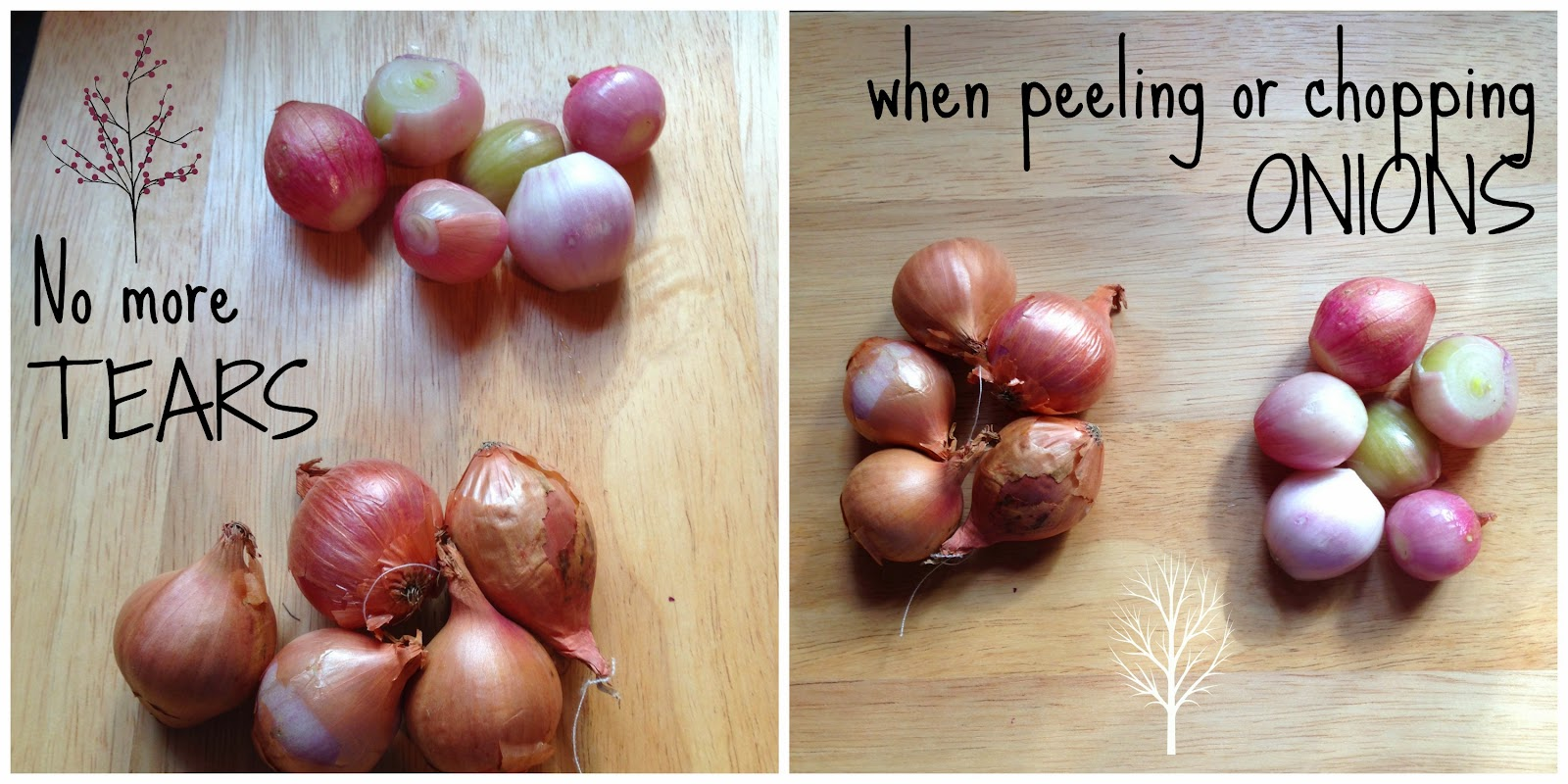 How to peel and chop onions without your eyes stinging | Kukskitchen