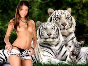 tiger pose