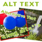 Image Alt Texts