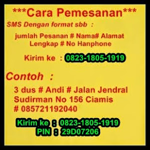 Pesan SMS