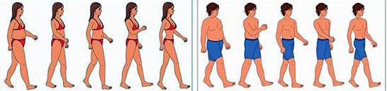 Learn How to Shed Your Weight Fast