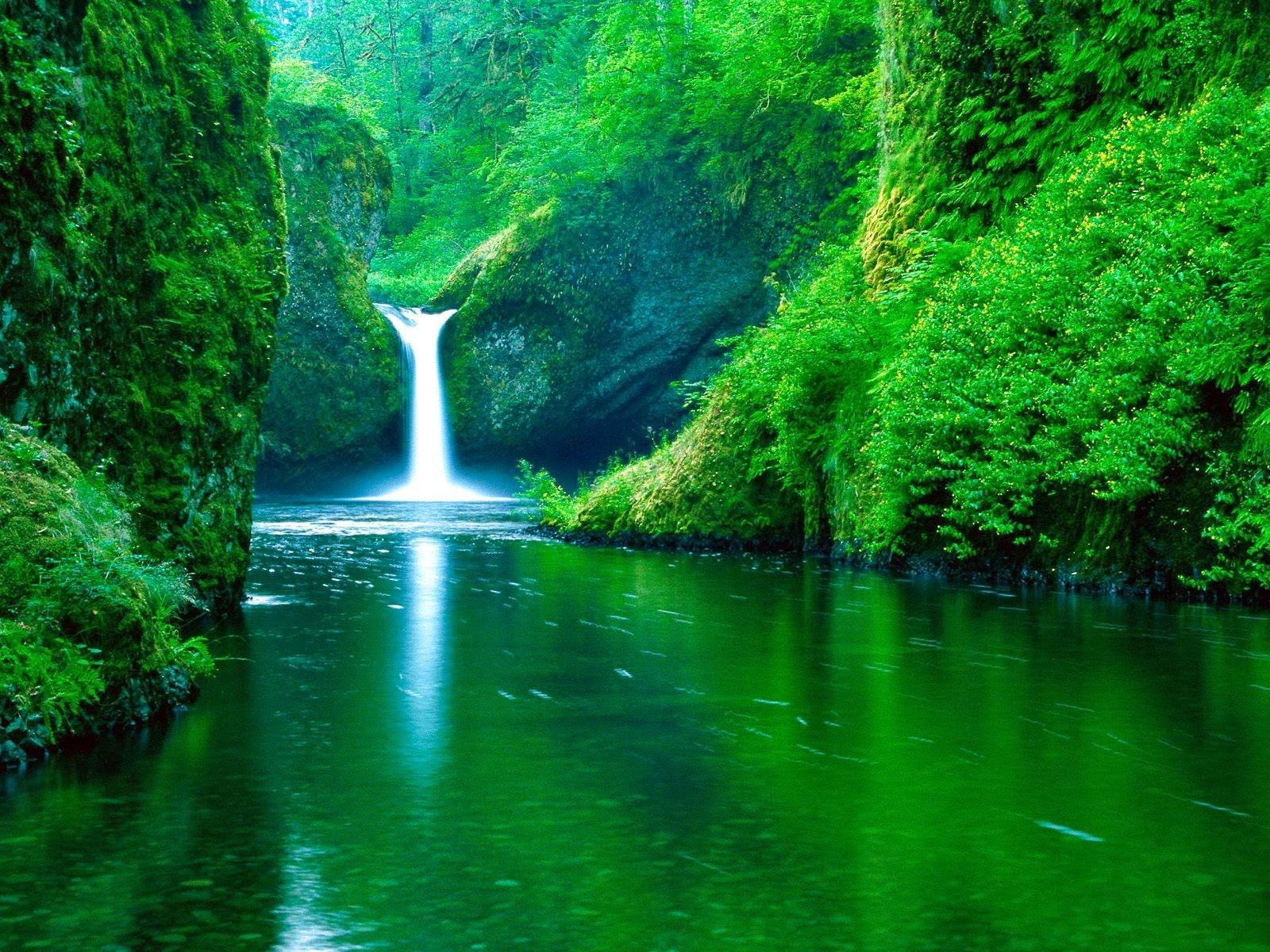 Beautiful Nature Photos