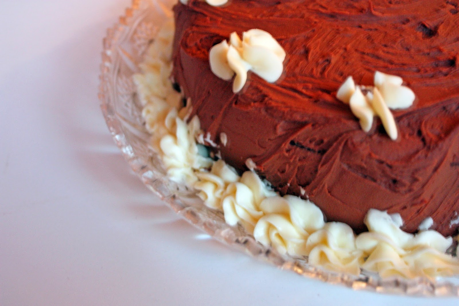 gluten free chocolate layer cake vegan