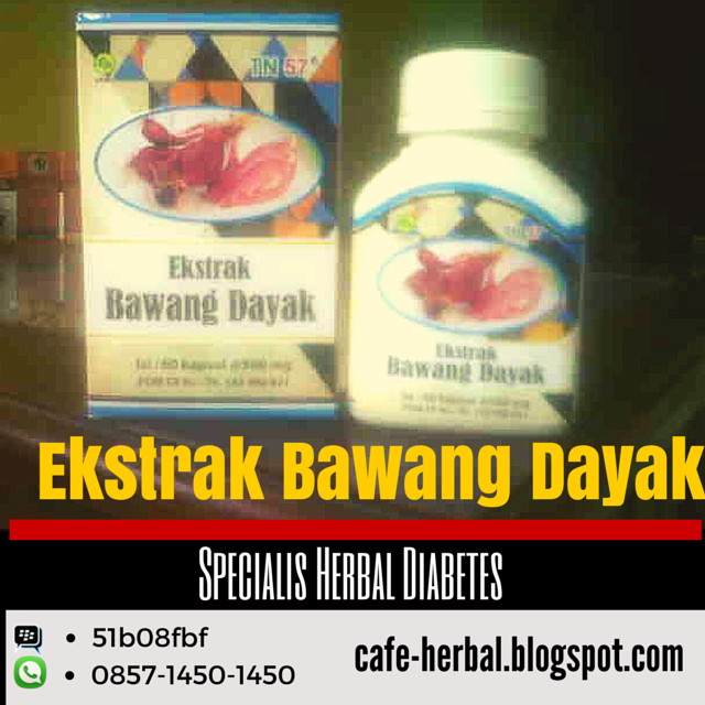 anti diabetes bawang dayak