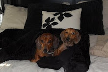 Layla and Maya