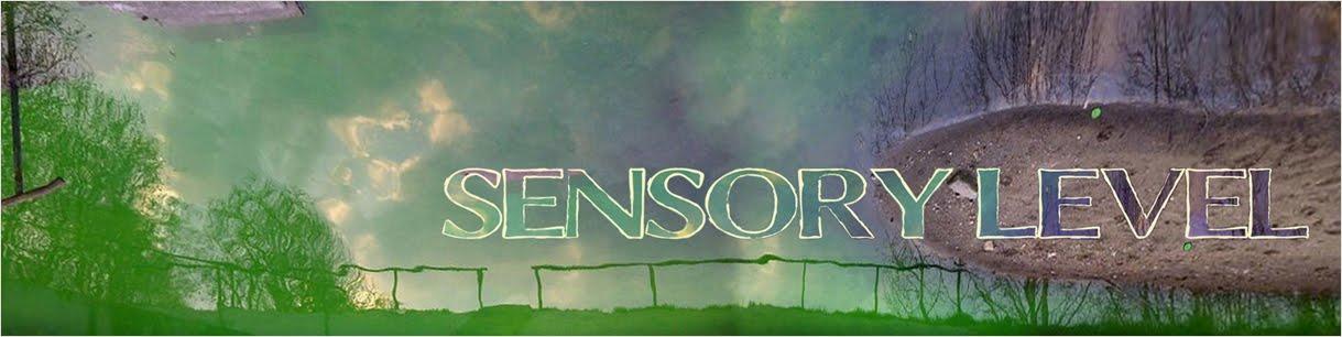 SENSORY LEVEL