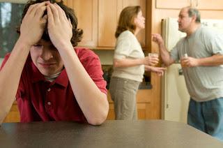 La evolución del divorcio: factores teóricos