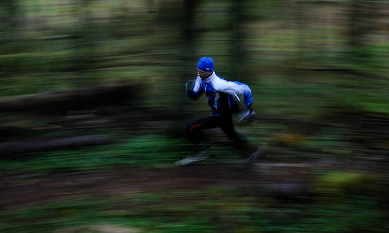 metsajooks, running in woods, sport