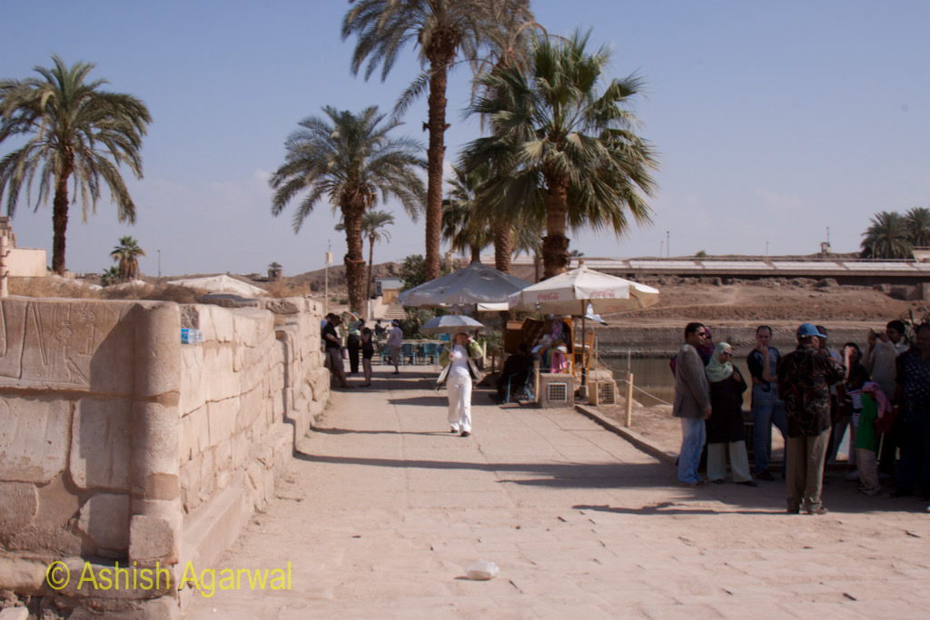 Tourist and trees inside the rear portion of the Karnak temple in Luxor