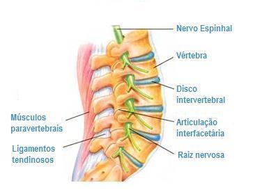 Tratamento fisioterapêutico na incontinência urinária de esforços 9