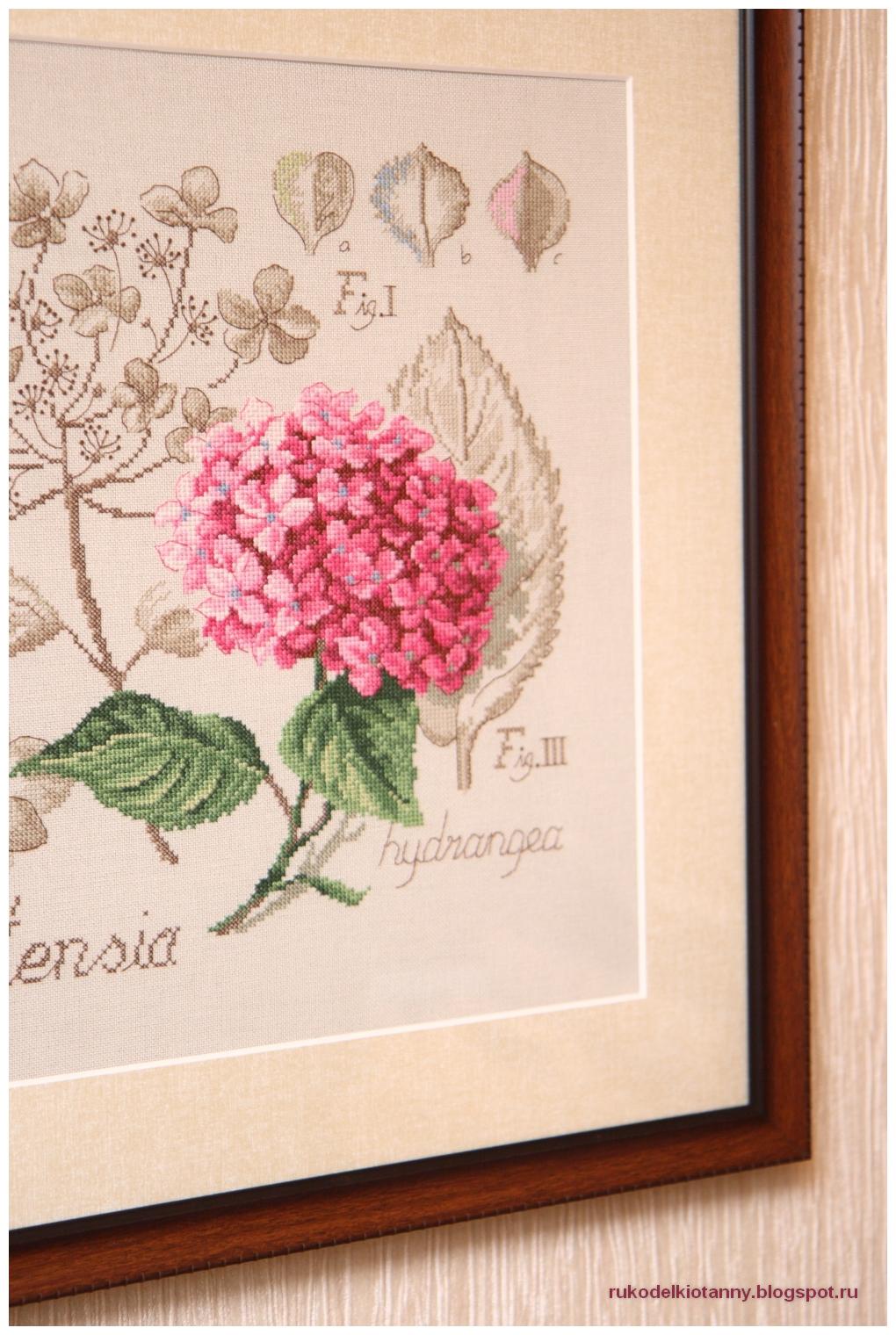 вышивка ботаническая серия