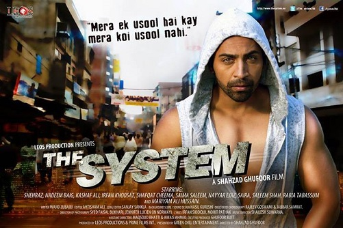 Poster Of The System 2014 Pakistani Movie 400MB HDRip 480p ESubs Free Download Watch Online