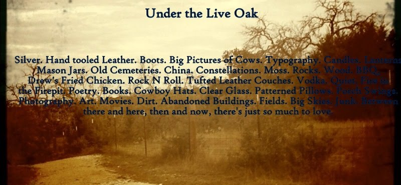 Under the Live Oak