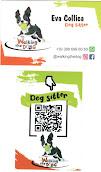 @walkingthedog