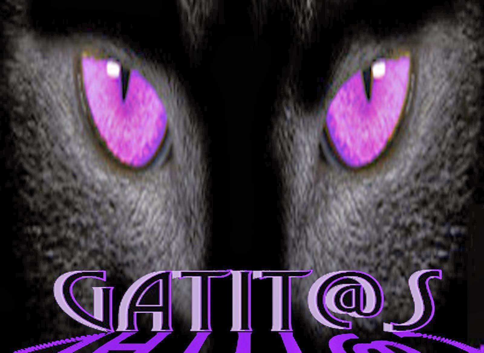 gatit@s
