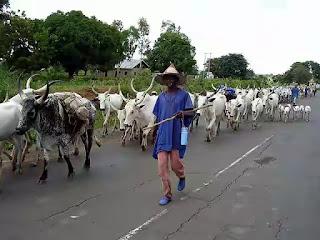 Fulani herdsmen strike again in Benue, kidnap four policemen
