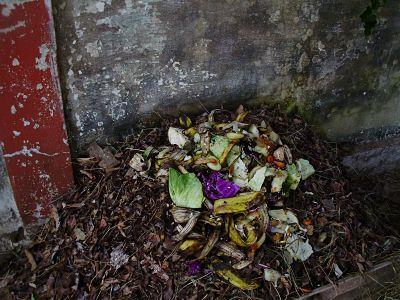como fazer compostagem doméstica