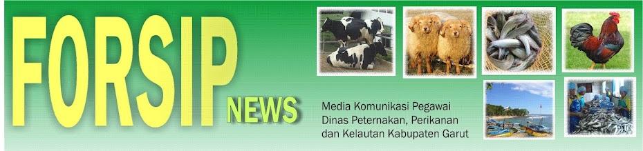 Forsip News