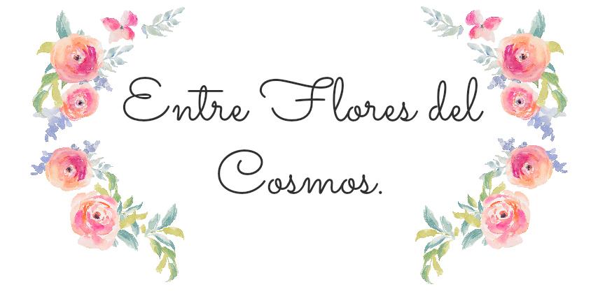 Entre flores del cosmos.