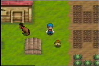 Download Harvest Moon Game Nitendo 64 ISO Untuk Komputer Full Version ZGASPC