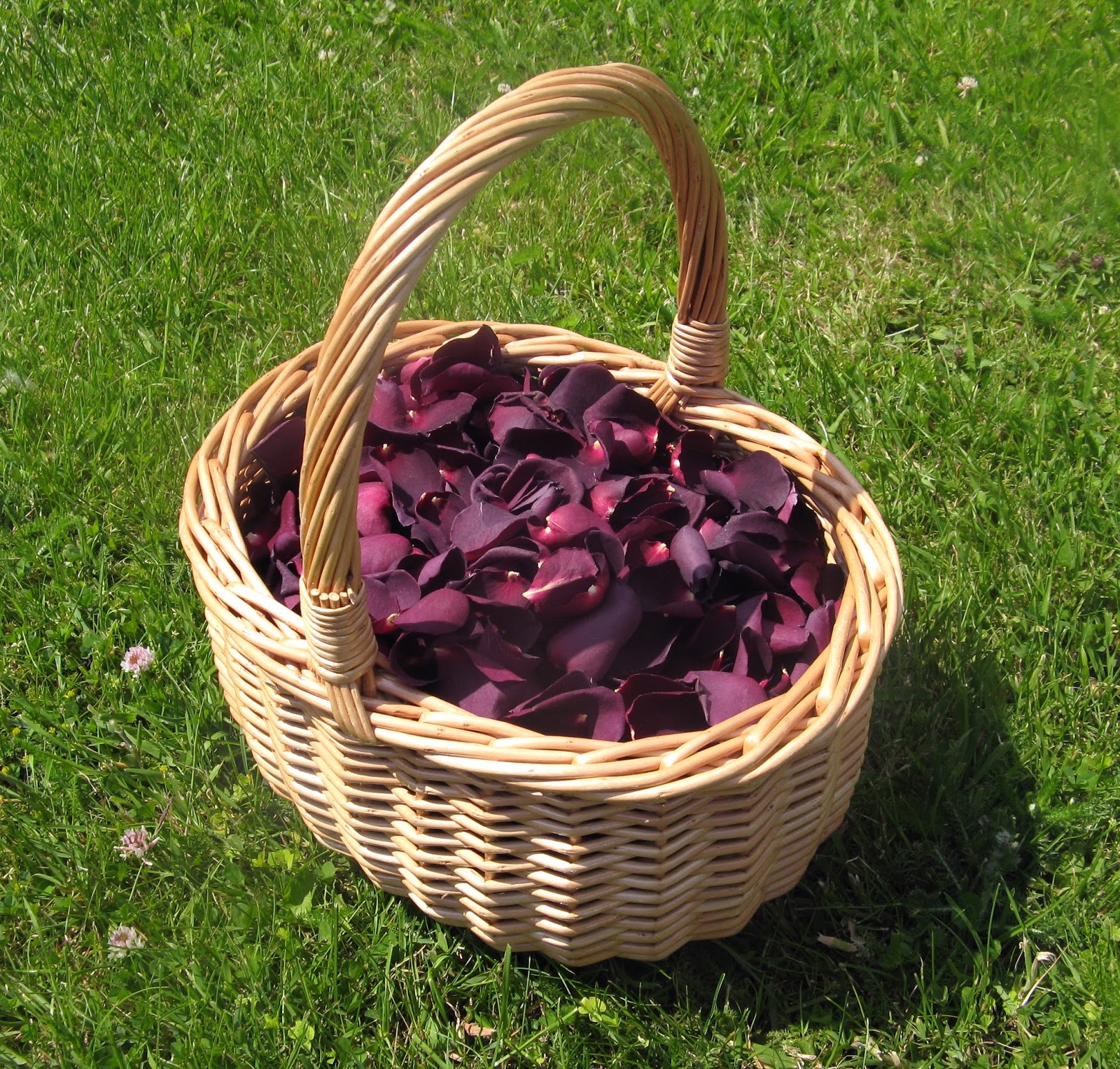 Wedding Baskets For Flower Petals : The confetti beautiful berries autumn and fall
