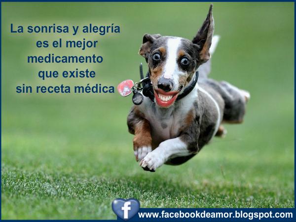 Imagenes De Alegria Con Frases
