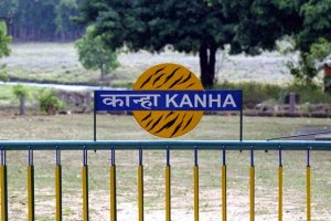 accommodation in Kanha