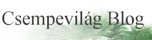 Kövesd blogunkat!