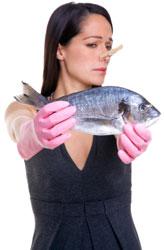 Puzza di pesce