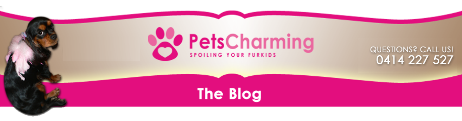 Pets Charming