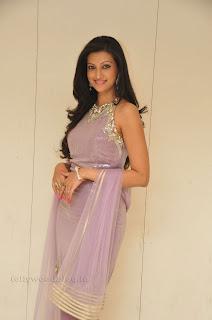 Hasha Nandini pos at cmr aashadam event 020.jpg