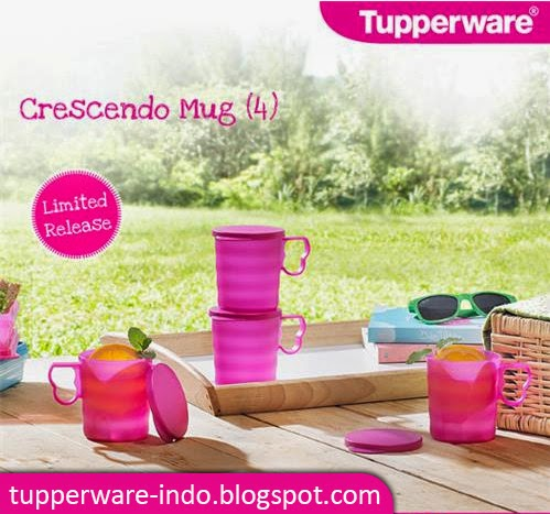 Tupperware Crescendo Mug (4)