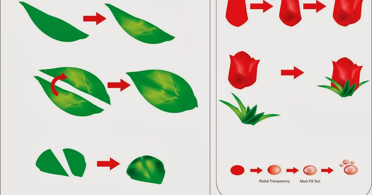 how to make rose flower with coreldraw x5
