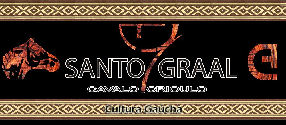 Santo Graal Cavalo Crioulo - Genética de Qualidade - Cultura Gaúcha - Gaúcho - Tradição