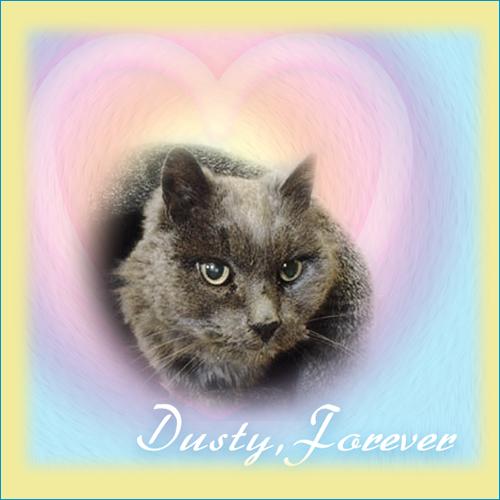 Rest in Peace Dusty