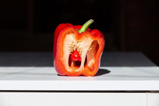 paprika anatomy