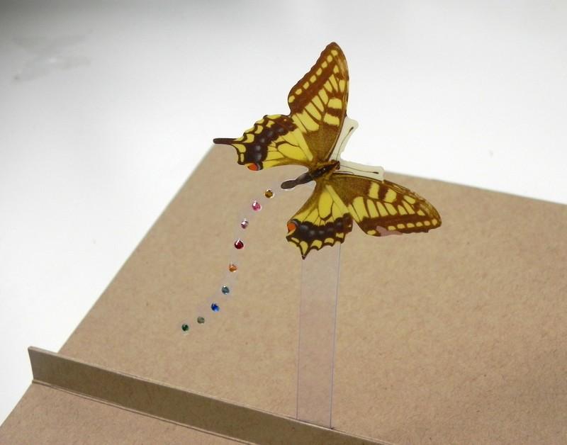 Návod na výrobu pop-up přání s motýlem.