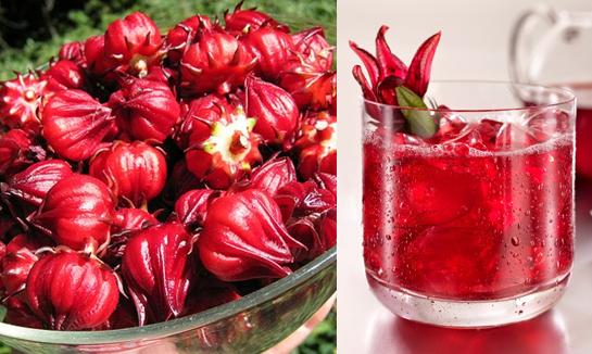 Cách ngâm hoa Atiso đỏ với mật ong - Đường phèn