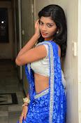 Bindhu latest sizzling saree pics-thumbnail-6