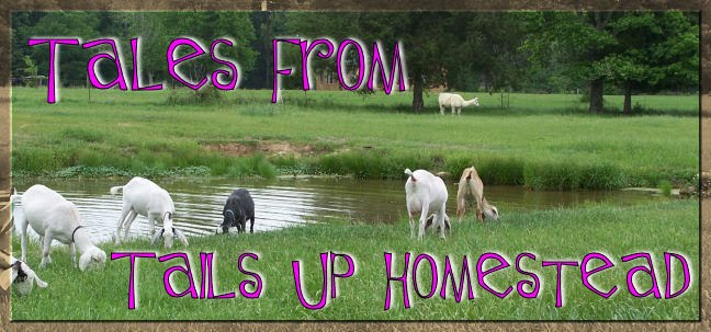 Tales from Tails Up Homestead