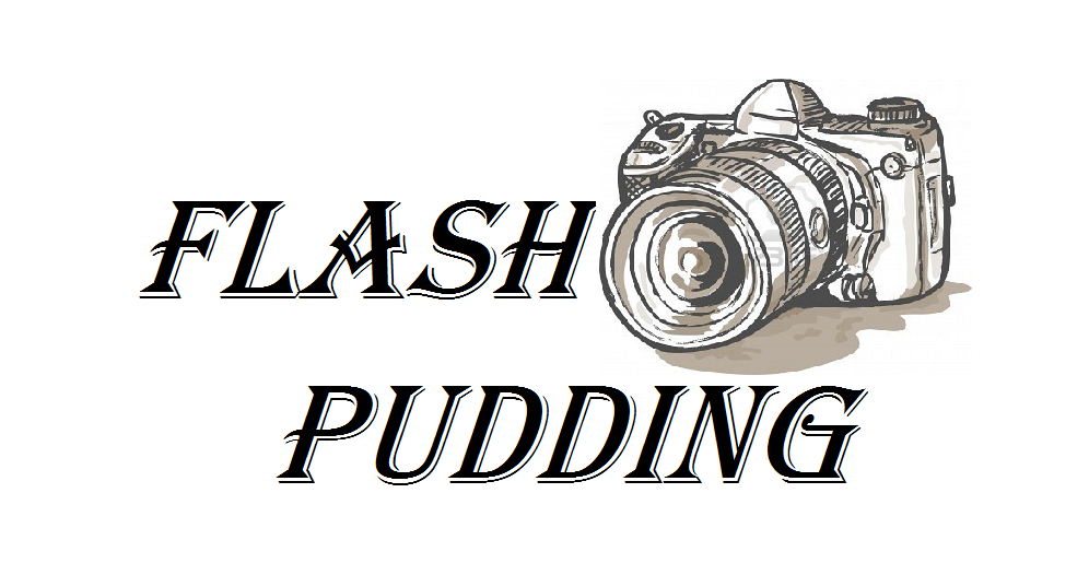 flash pudding