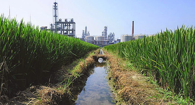 A chemical factory beside a rice paddy in Yixing in Jiangsu Province, where industrial pollution has contaminated soil and food crops. (Credit: Mark Ralston/AFP/Getty Images) Click to enlarge.
