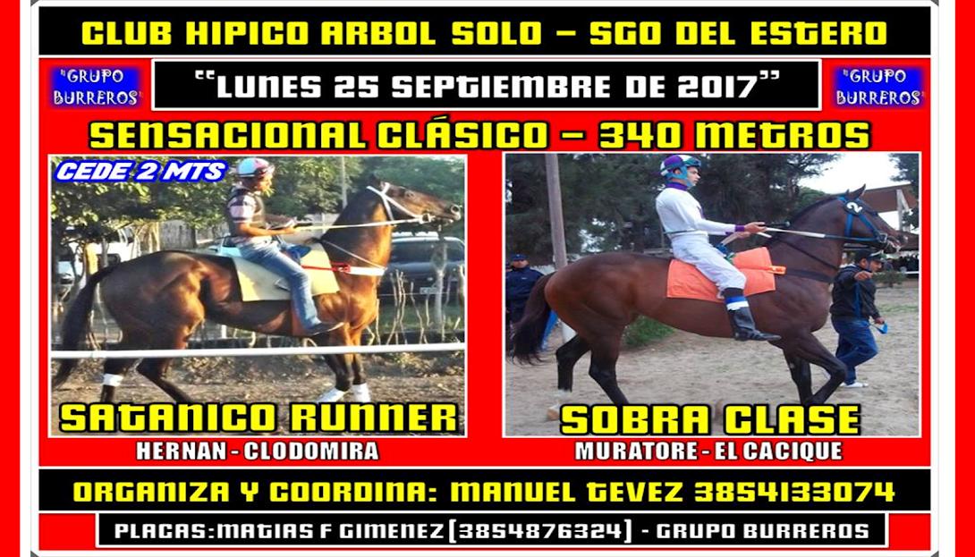 25-09-17-HIP. ARBOL SOLO-CLAS.