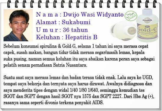 Cara Menyembuhkan Penyakit Hepatitis B