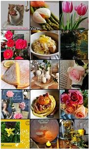 Mon Feed Instagram