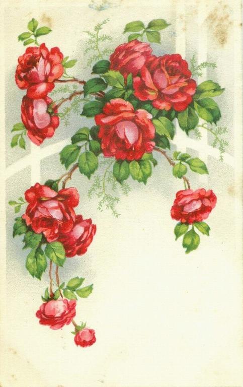 Винтажные открытки с цветами цветы